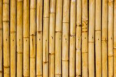 Bamboo wall Stock Photography