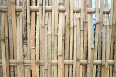 Bamboo wall or bamboo fence. In asia Royalty Free Stock Photography