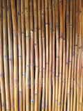 Bamboo. Wall of house royalty free stock photography