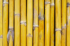 Bamboo wall house Stock Image