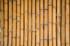 Bamboo wall at the luxury hotel in Bali island, Indonesia Royalty Free Stock Images