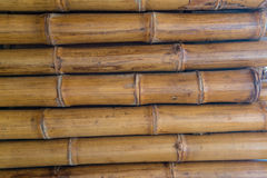 Bamboo wall pattern Stock Images