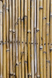 Bamboo wall Stock Photo