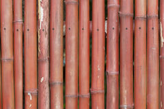 Bamboo wall Royalty Free Stock Photography