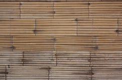 Bamboo wall. Royalty Free Stock Image