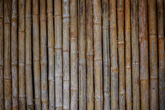 Bamboo Wall Texture Royalty Free Stock Photos