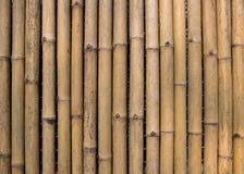 Bamboo wall texture background Stock Photography
