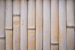 Bamboo wall texture background Royalty Free Stock Photos