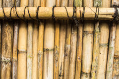 Bamboo wall. The texture of old bamboo Stock Photos