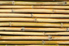 Bamboo wall texture Royalty Free Stock Image