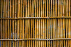 Bamboo wall. Tree bamboo wall  fence background Stock Photo