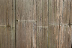 Bamboo wall wood Stock Image