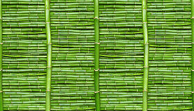 Bamboo - wallpaper Stock Images