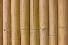 Bamboo wallpaper Stock Photos
