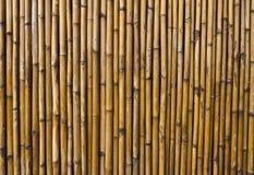 Bamboo walls. Royalty Free Stock Photo