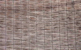 Bamboo walls. Stock Photography
