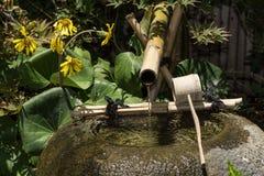 Bamboo water fountain Stock Photos