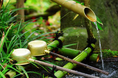 Bamboo water fountain with ladle in Japanese temple Royalty Free Stock Photo