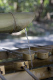 Bamboo water sink at Shinto shrine Royalty Free Stock Photography