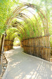 Bamboo way. In thailand way Royalty Free Stock Photos