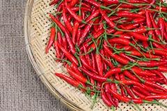 bamboo weave перцев chili красный Стоковые Изображения