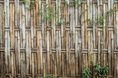 Bamboo weave. The abstract background from the bamboo weave Royalty Free Stock Image