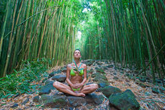 Bamboo woman meditate Royalty Free Stock Image