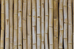 Bamboo wood background Royalty Free Stock Photo