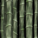 Bamboo wood background Royalty Free Stock Photography