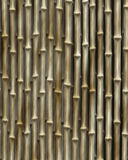 Bamboo wood background Stock Images
