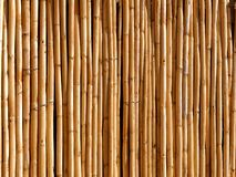 Bamboo wood background. Or backdrop stock images