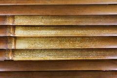 Bamboo wood background. Bamboo wood nsture background texture stock image