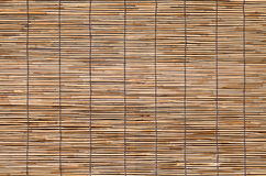 Bamboo wood blind window seamless background Royalty Free Stock Photography
