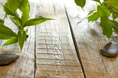 Bamboo on wooden boards background concept Stock Photos