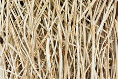 Bamboo wooden texture Royalty Free Stock Image