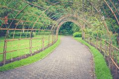 Bamboo wooden tunnel walkway or footpath in public park. Autumn filter effect Stock Photography