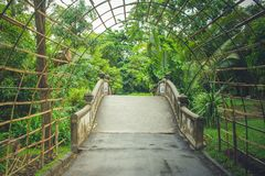 Bamboo wooden tunnel walkway at public park. Bamboo wooden tunnel walkway at public park in rainy day Stock Photos