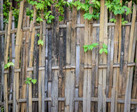 Bamboo wooden wall background Royalty Free Stock Photography
