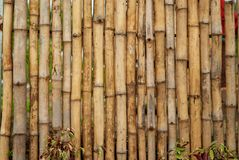 Simple bamboo arrangement for a fence or wall royalty free stock photo