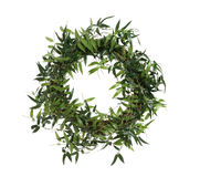 Bamboo Wreath Stock Photography
