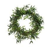 Bamboo Wreath stock photography