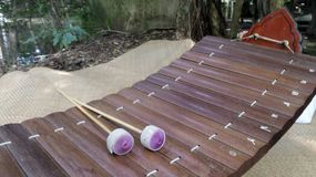 Bamboo xylophone on natural mat in the garden Stock Photo