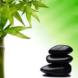 Bamboo and zen balancing stone. Bamboo and zen stone on green background royalty free stock photo