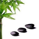 Bamboo and zen stone. On white background stock photo