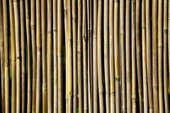 bamboofence纹理 库存图片