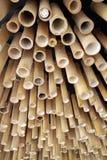 bambool灯 免版税库存图片