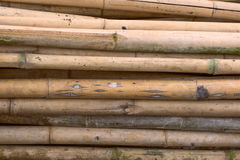 Bamboom Texture. Bamboo stacking at a farm Stock Images