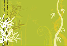 Bamboos. On floral designed background Stock Image
