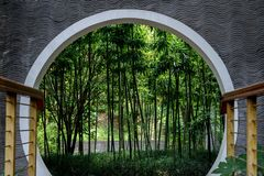 Bamboos Inside Chinese Style Gate Royalty Free Stock Image