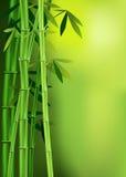 Bambou Image stock